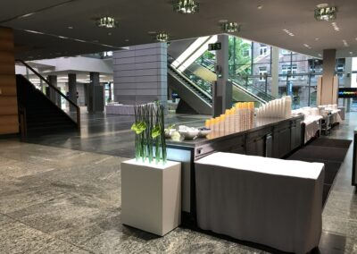 BASF Hauptversammlung, Foyer mit Thekenanlage für Buffet und Getränke, Leuchtblumenkasten mit Bambus