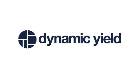 dunkelblaues Logoelement kreisförmig und dunkelblauer Logoschriftzug dinamic yield auf weißem Hintergrund