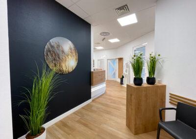 Schwarze Wand mit rundem Schilfnaturbild, Endstück der Empfangstheke, Pflanzen Säulen aus Eiche im Wartebereich, grüne Pflanzen, Garderobe aus KS in Holzoptik