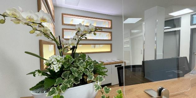 Praxis Empfangsbereich mit Blumenvase auf Tresen, COVID 19 Spuckschutz auf Thekenablage, beleuchtete Dekofenster mit Folienplott